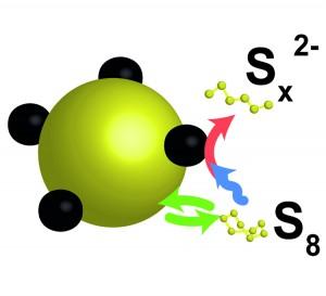 mechanism Li-S